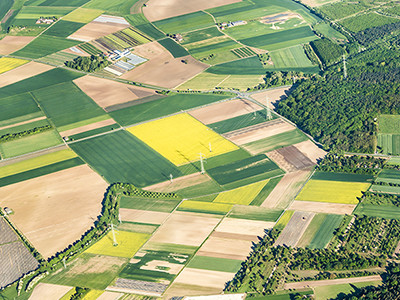 Aerial overhead of agricultural plots and forest