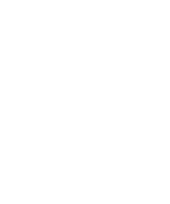 New Zealand effectively put 345 more police on the streets